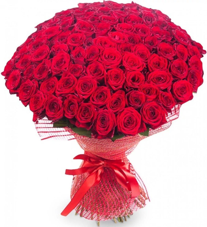 Роза картинки красивые букеты, картинки смешные очень