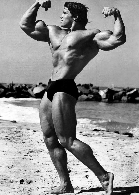 Упражнения Арнольда | Спорт и Здоровье