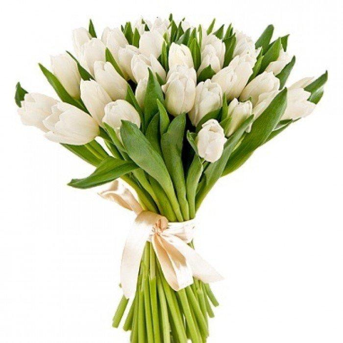 Букет невесты из тюльпанов 25 штук фото