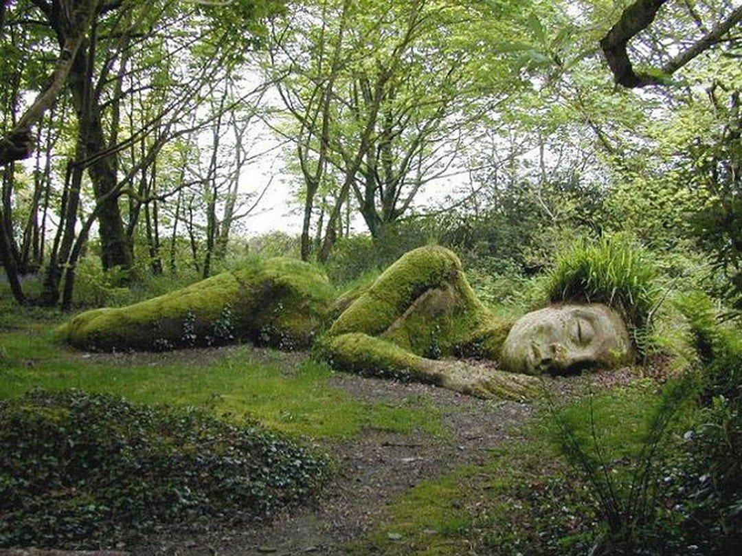 День, сад смешные картинки