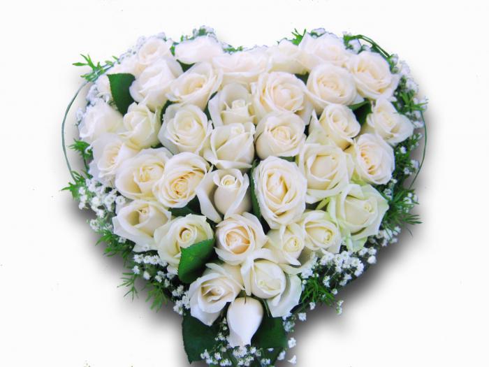 Цветы королеве, самый красивый букет белых роз