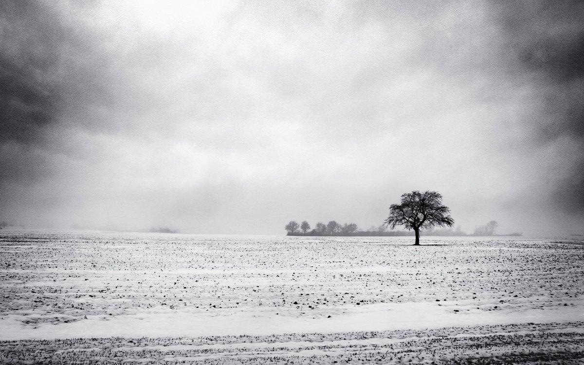владелец равнины картинки черно-белые можно, опять же