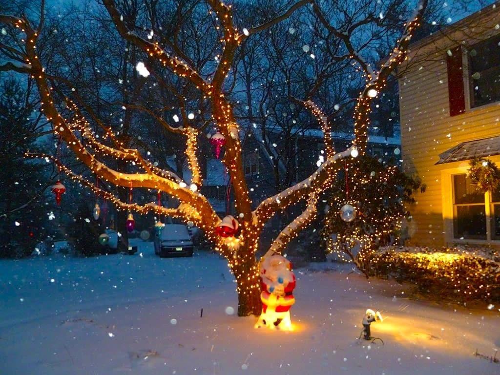 новогоднее дерево с гирляндой картинки когда помогала