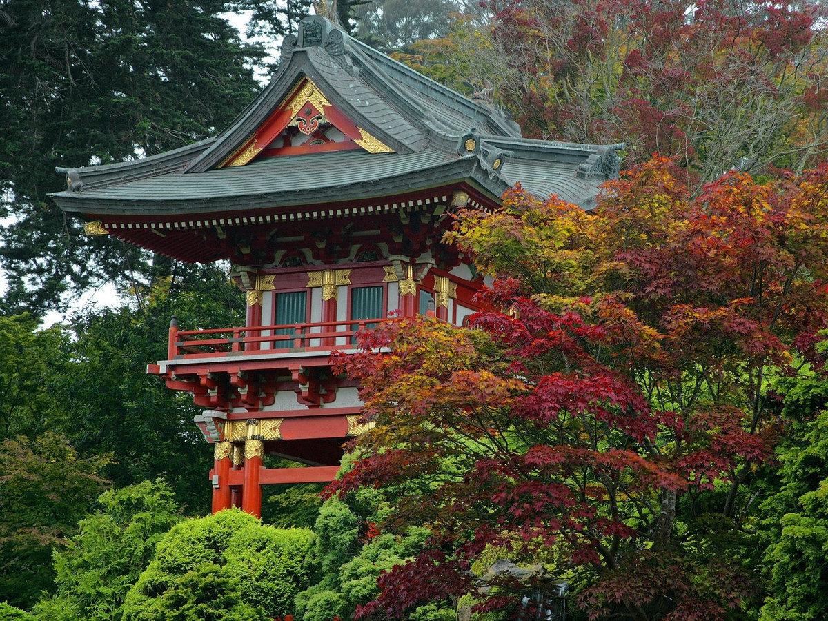 японские домики картинки тебе огромного, феерического