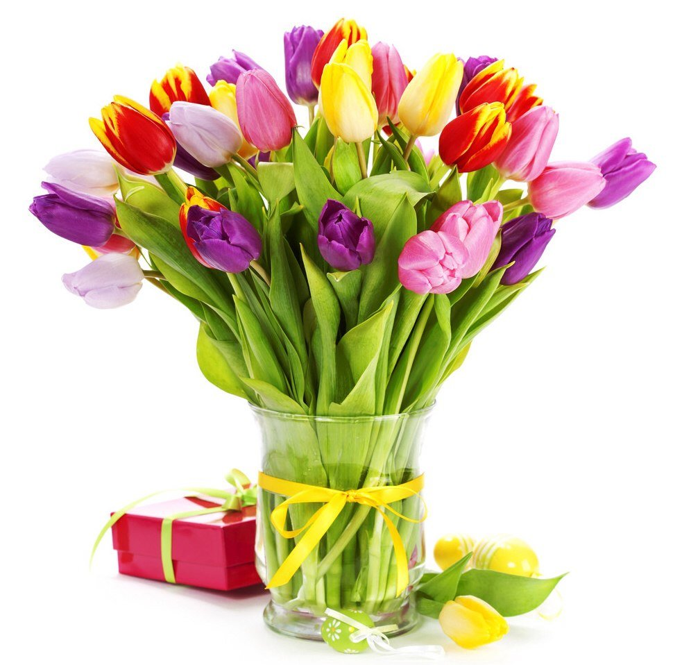 День рождения, тюльпаны для поздравления
