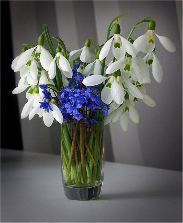 Букет из цветов подснежников