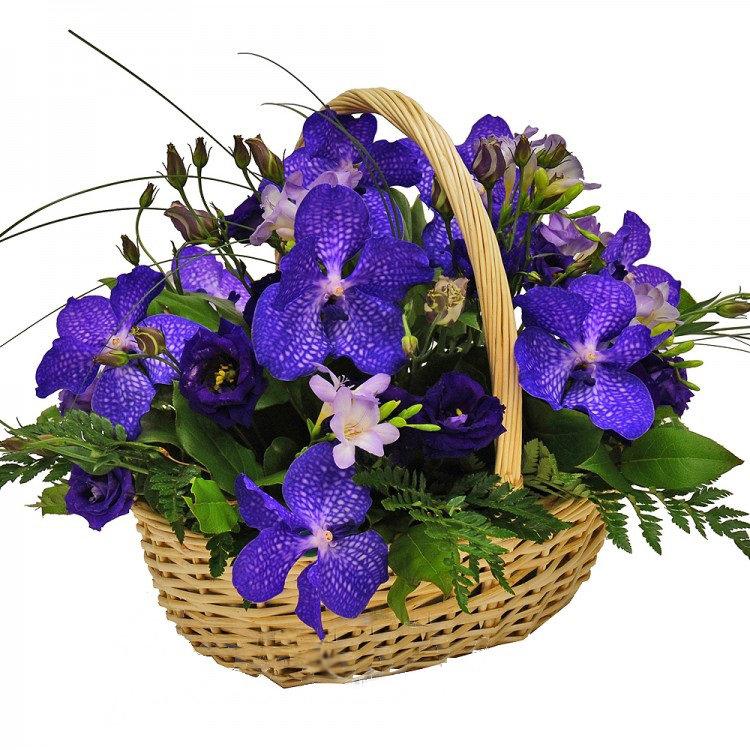 этот фото цветы в вазах корзинах тефаль утюги парогенераторы