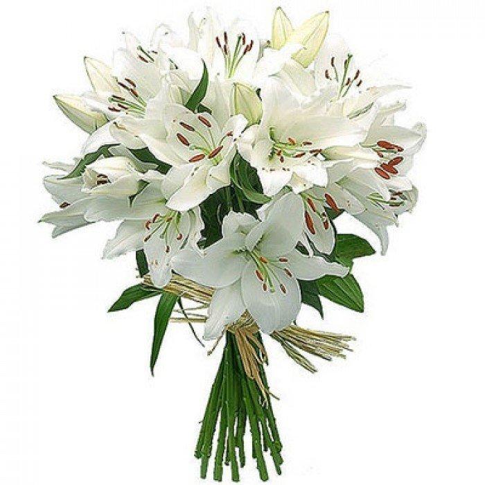 Красивые открытки с белыми лилиями, музыкальные для