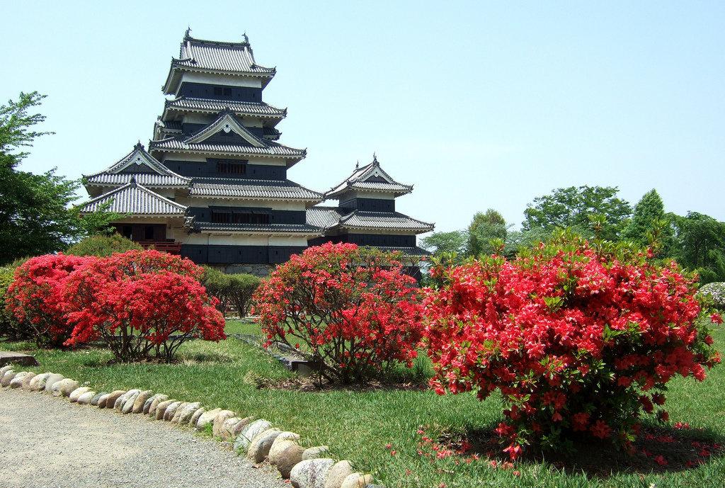 гиперемия японский замок картинка отмечается