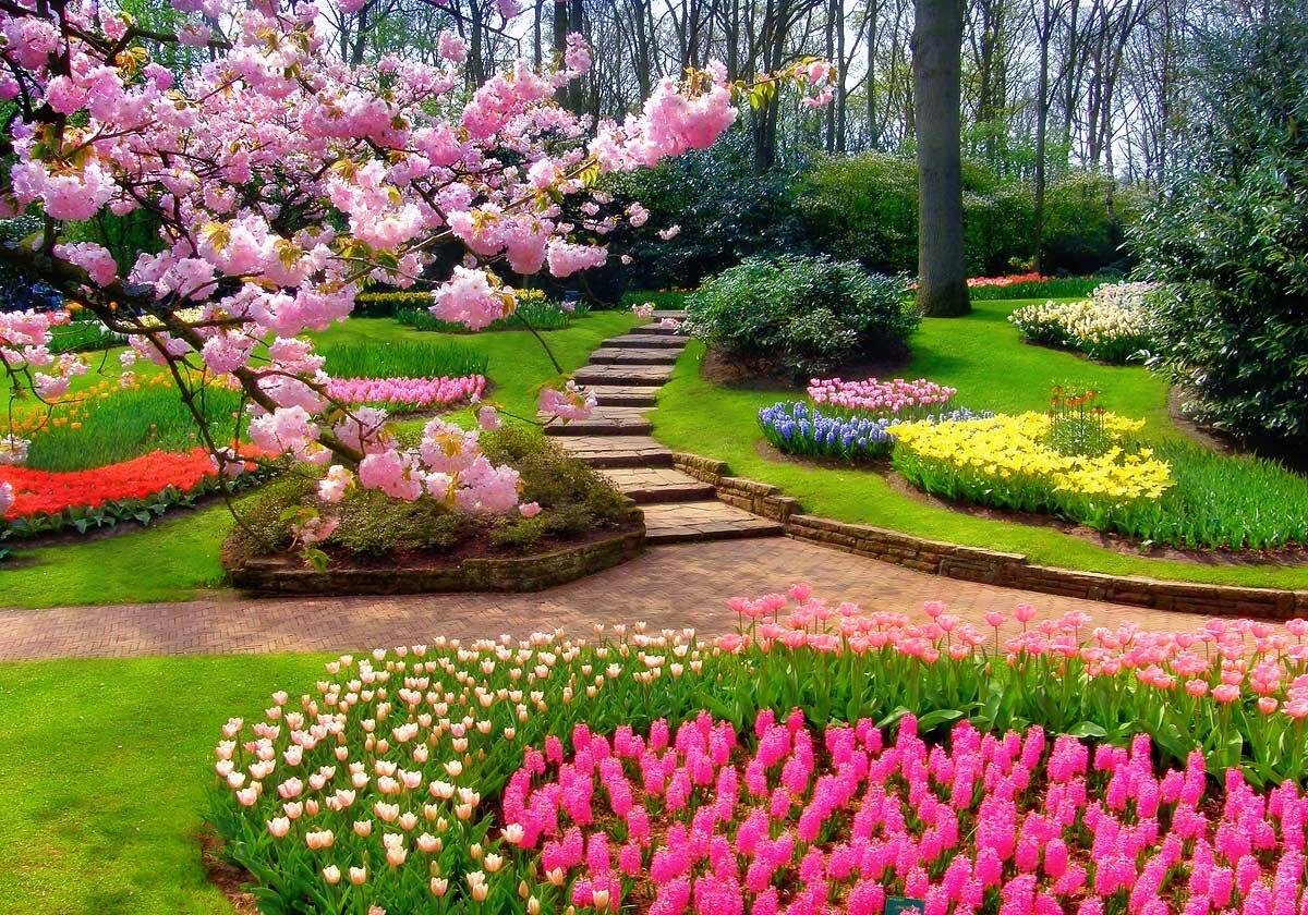 самые красивые сады и парки мира картинки