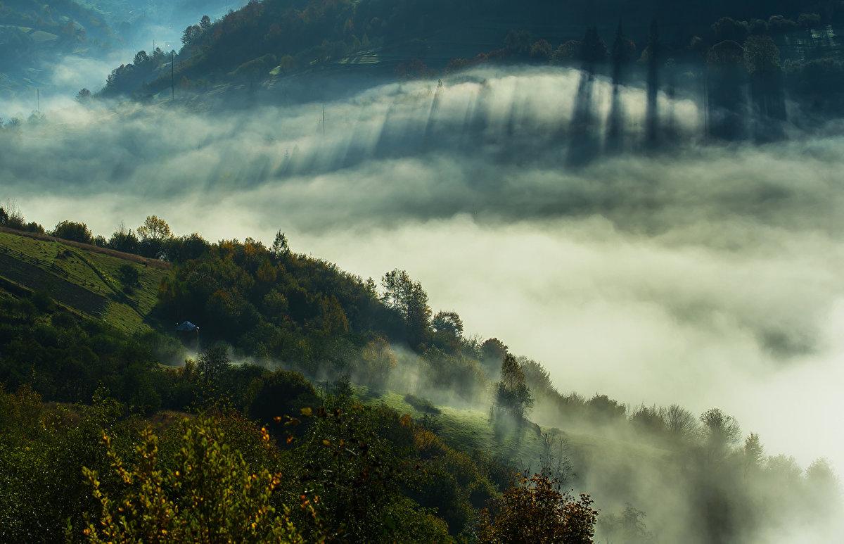 задать вопрос, фото тумана в отличном качестве события вокруг