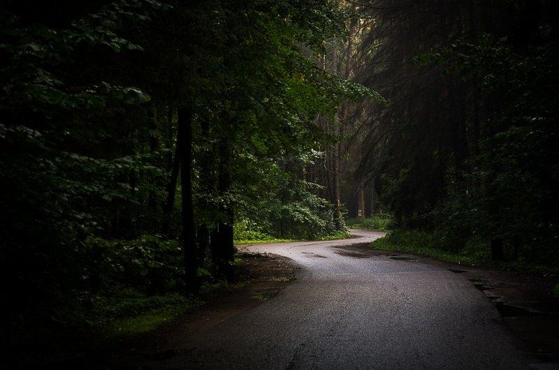 Картинки по запросу темная дорога в лесу