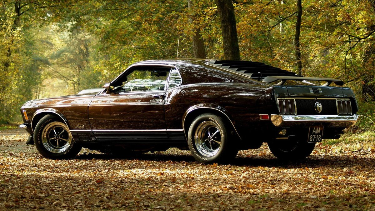 muscle car - classic cars muscle cars hd wallpapers and backgrounds