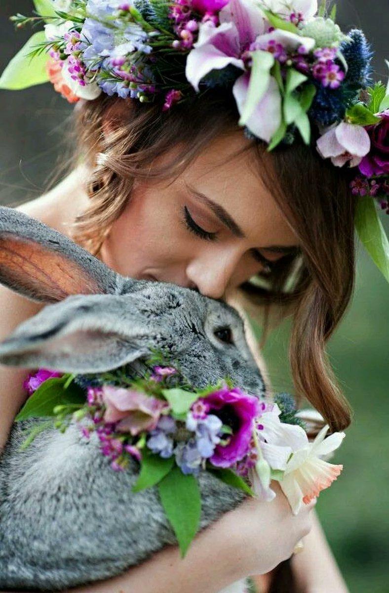 Поздравлением работников, девочка с кроликами картинки