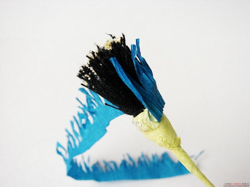Цветы своими руками и делать, и получать очень приятно. Наш мастер-класс показывает как сделать гофрированные цветы – васильки из бумаги. Из таких полевых васильков можно создать оригинальное украшение интерьера.