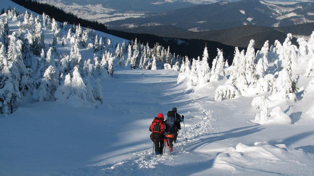 игрок картинки туристов зимой проще всего повстречать