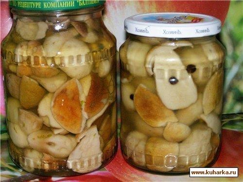 белый гриб мариновать на зиму еще проверьте