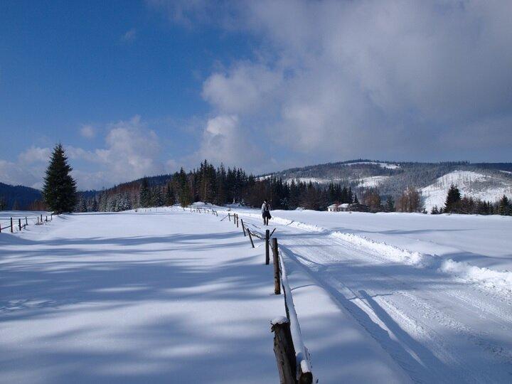 Горнолыжный курорт Висла, также известный как Яворник (по имени долины, в которой находится), расположен в невероятно живописном месте и популярен круглый год. Если летом сюда приезжают ради пеших и велосипедных прогулок, то зимой, конечно же, ради горных склонов.