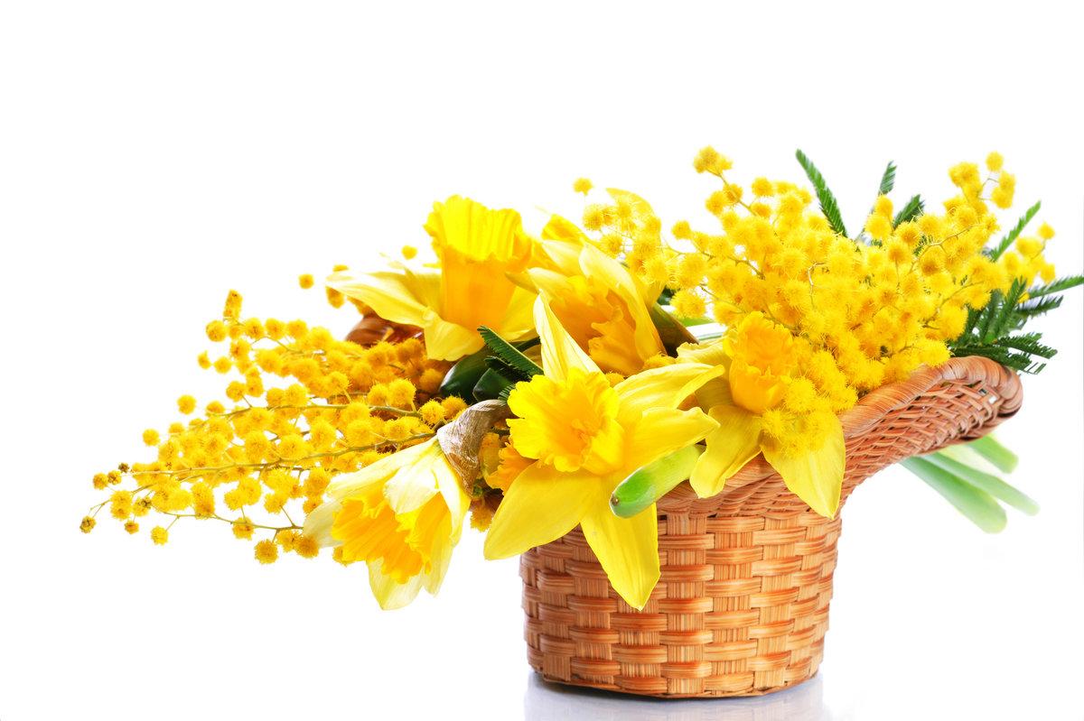 Открытка тюльпаны с мимозой, открытки для
