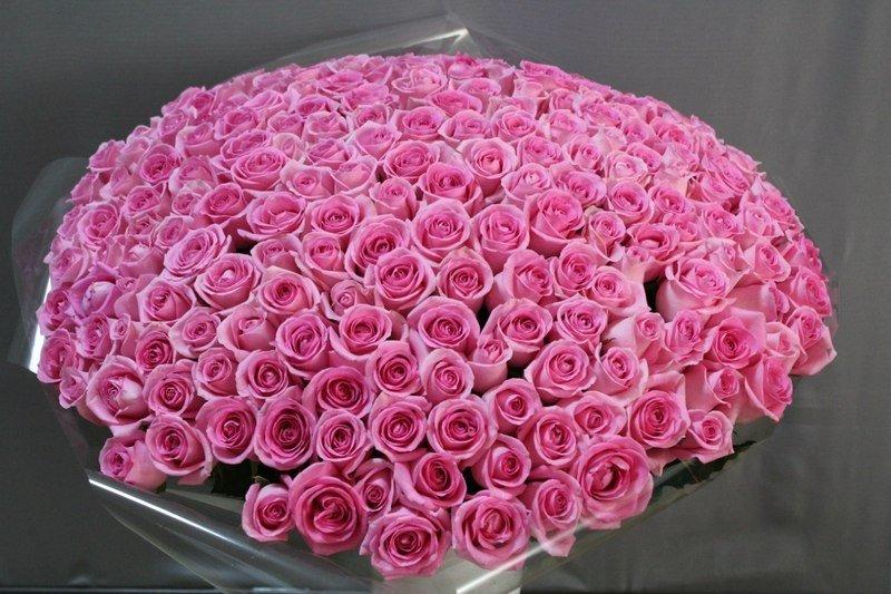 Красивые огромные букеты роз картинки красивые
