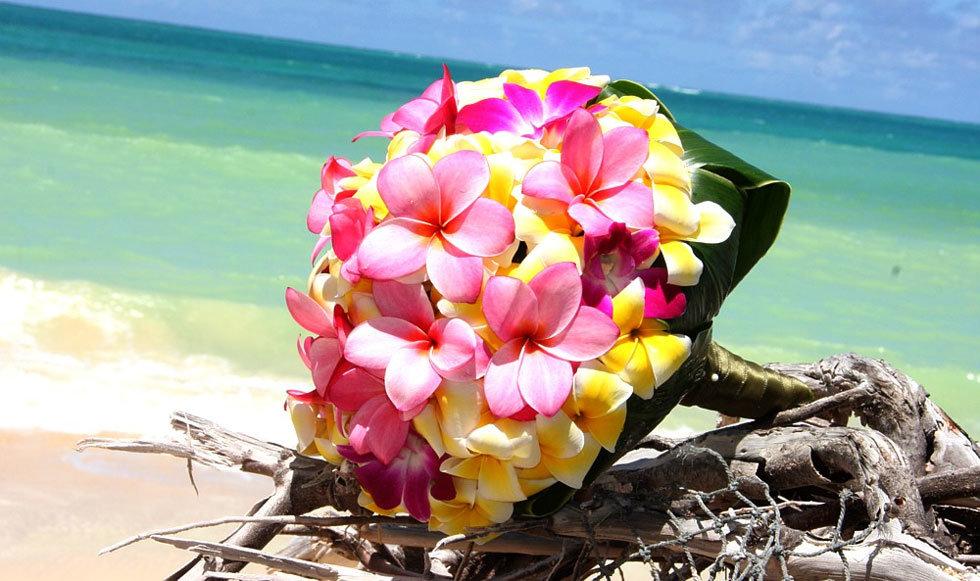 открытка с днем рождения море пляж цветы делаешь все