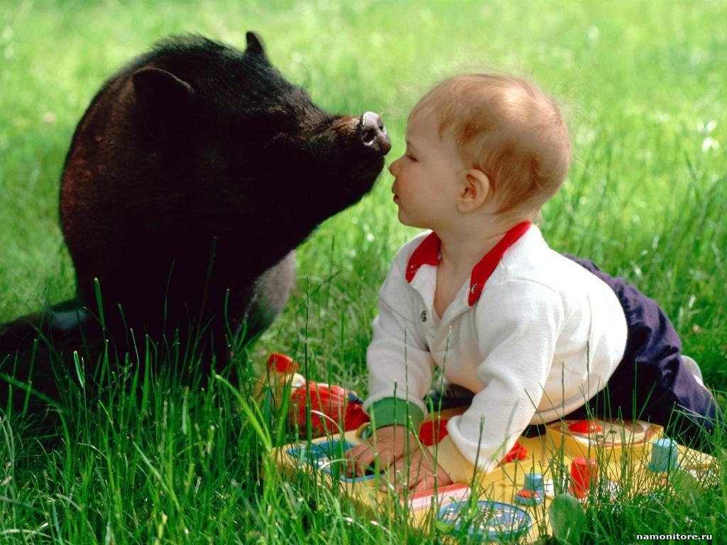 Приколы ржачные, картинки детей с животными прикольные