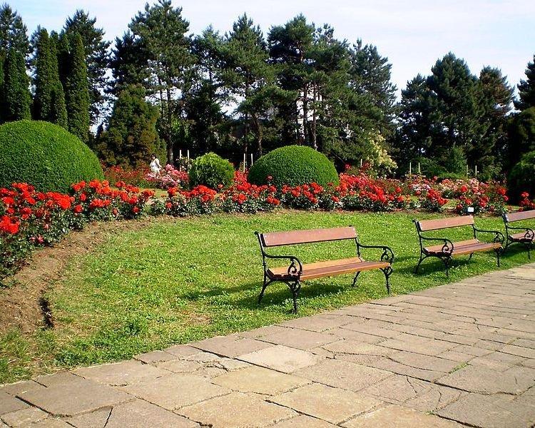 Секс ботанический сад