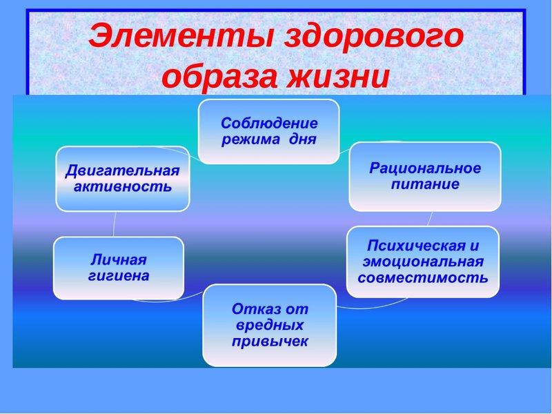 Термоноски каковы причины выбора здорового образа жизни выборе летнего термобелья