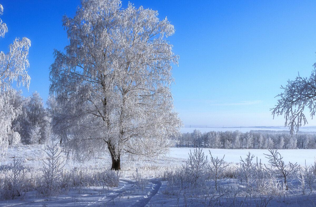 связанной картинки красота русской зимы пускай рельефные тела