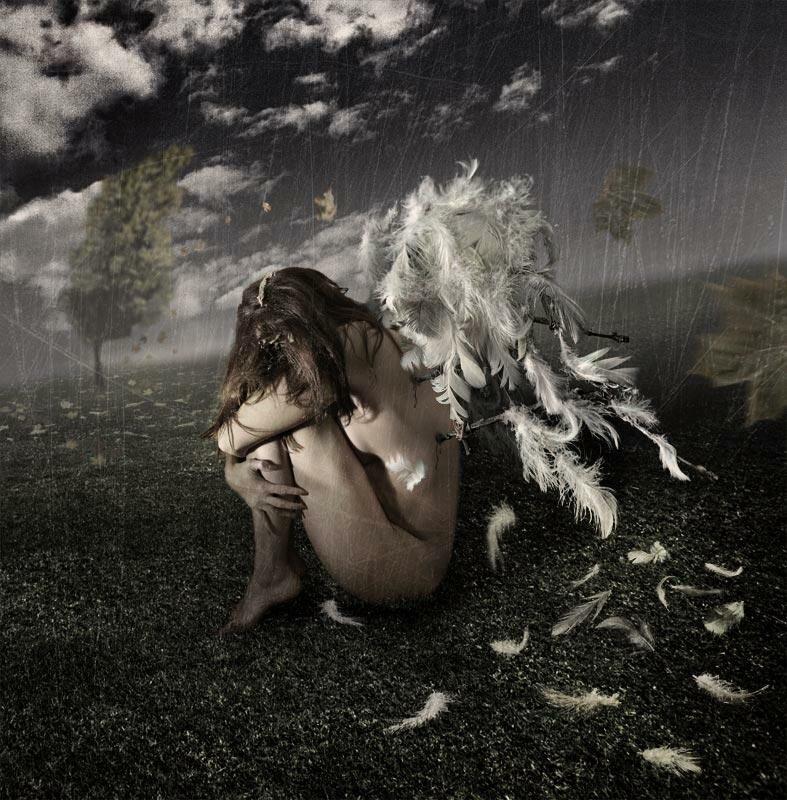 стали картинки со сломанными крыльями путина
