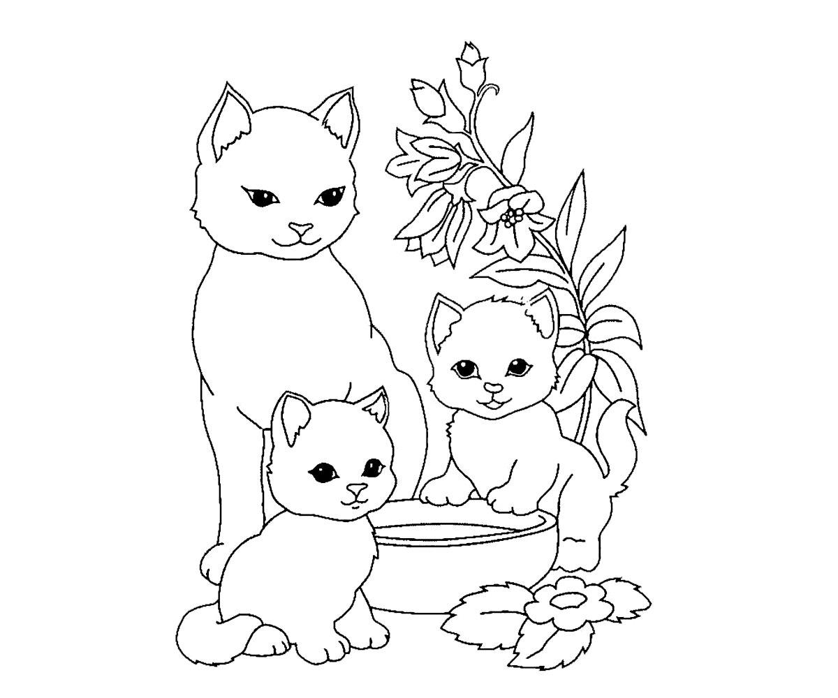 Раскраска милые котики и собачки до слез