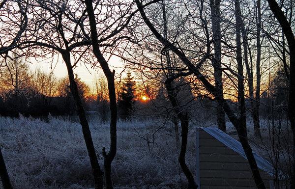 поздний рассвет в январе