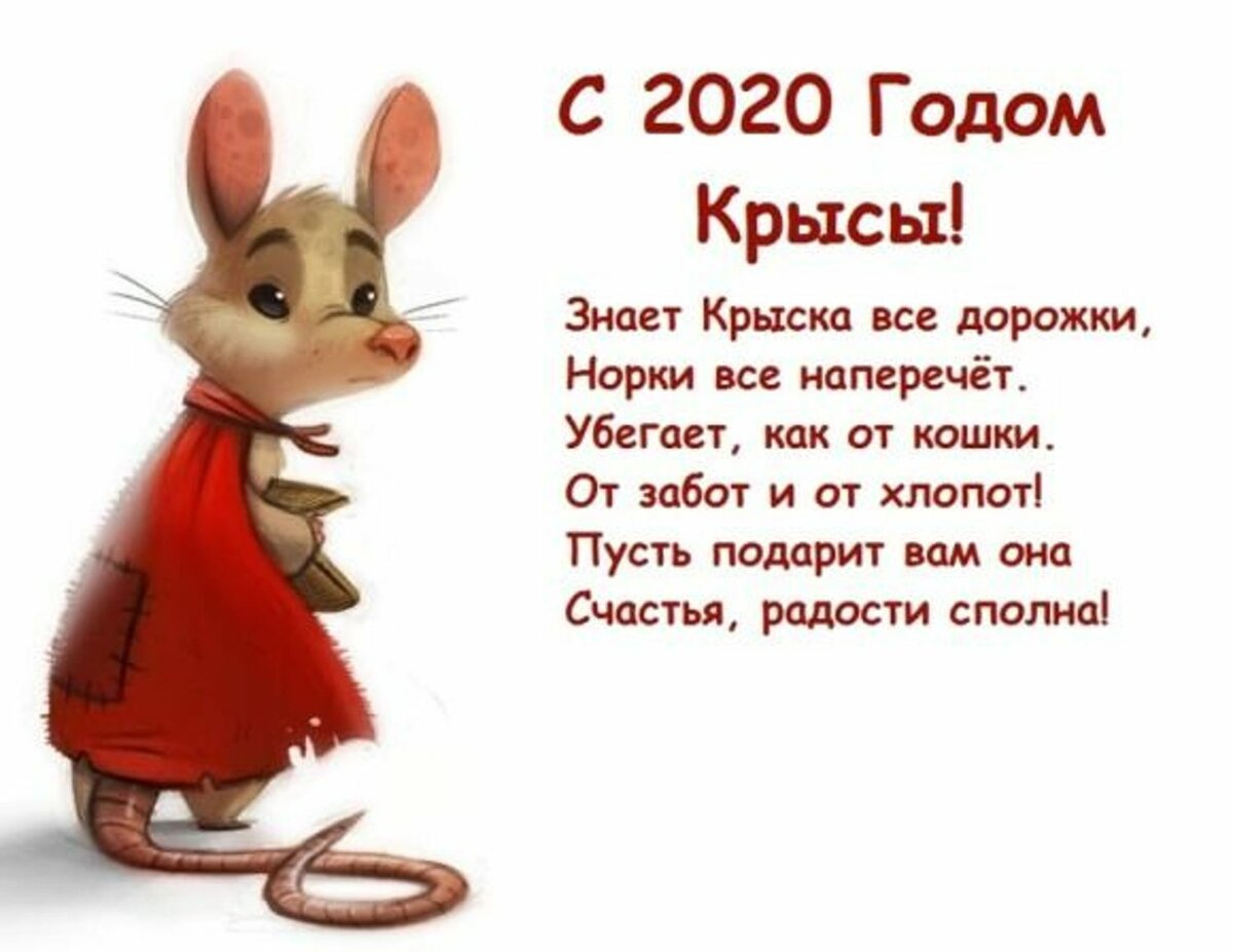 Год крысы поздравления