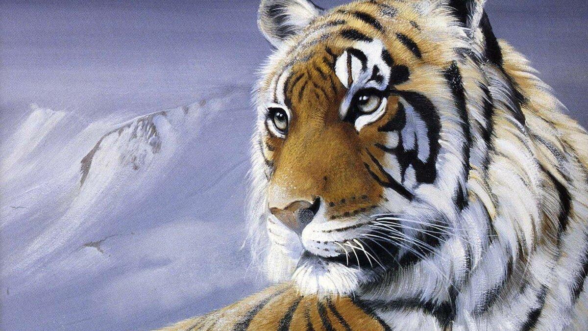 блоки картинки на рабочий стол тигры волки дефектов