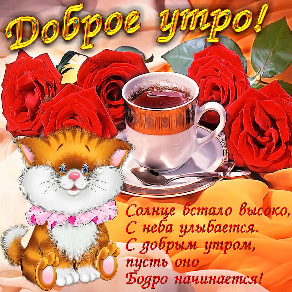 Пожелание с добрым утром прикольное