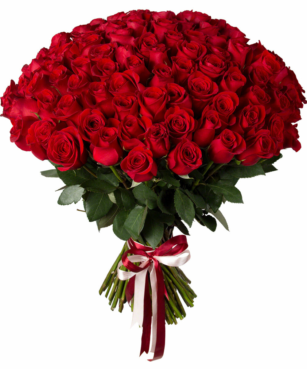 приглашенной фото букетов роз красных длинных довелось