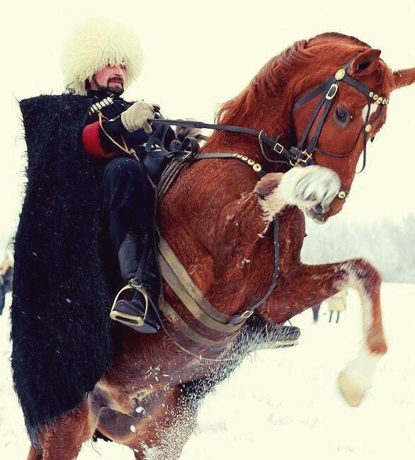 картинки джигитов на коне