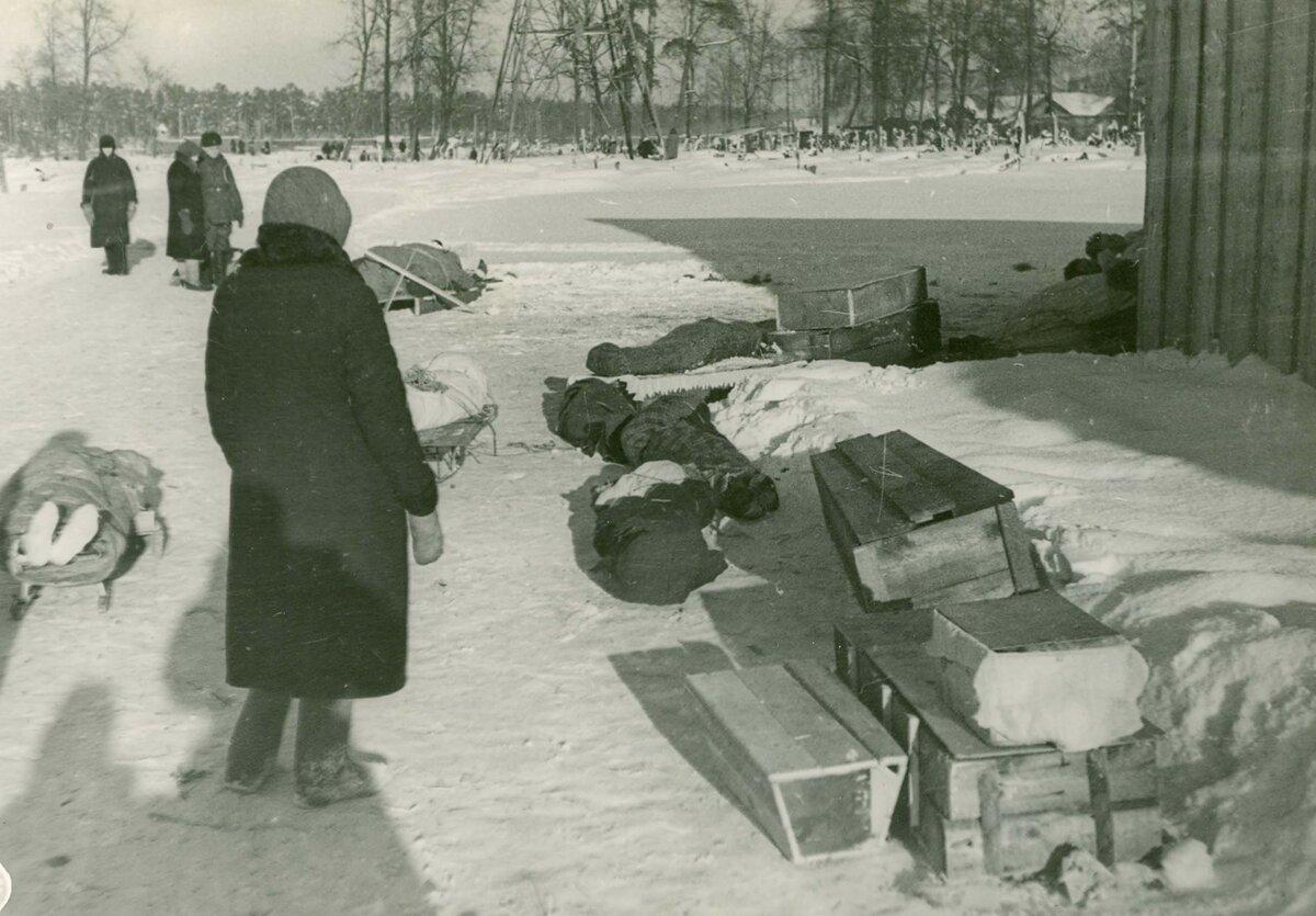 блокада ленинграда очки фото начале