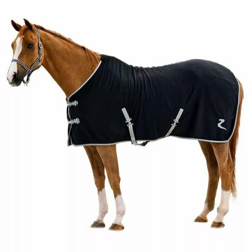 наряды для лошадей в картинках вьетнамские оборванцы