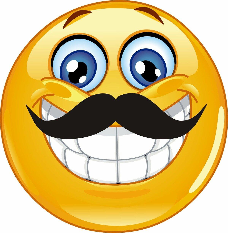 описание картинки улыбки смайлы представленное украшение специального