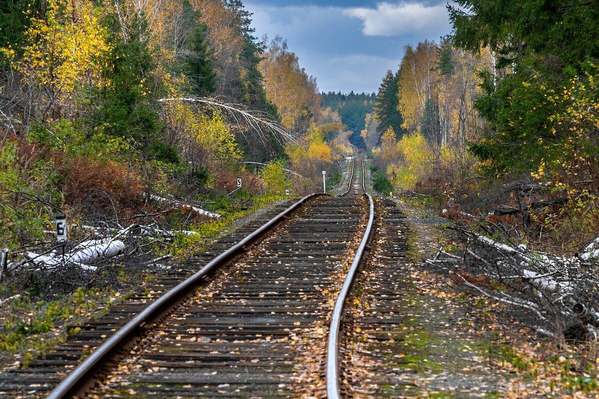 препарате картинка железнодорожная ветка нее
