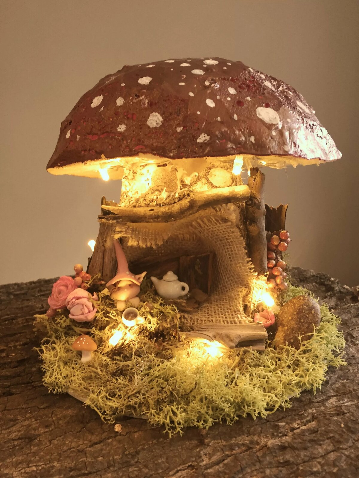 Фиолетовые грибы фото и их названия