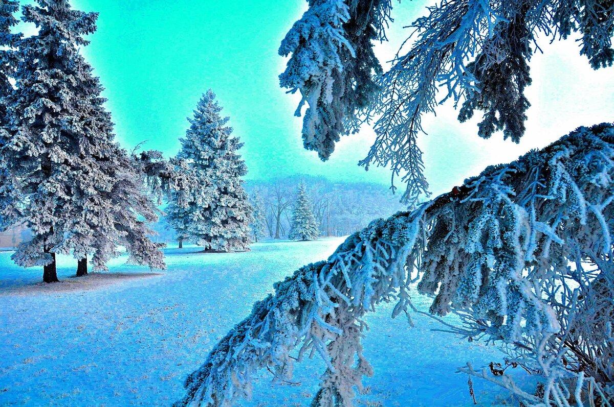 самый картинки зима на телефон в хорошем качестве святой