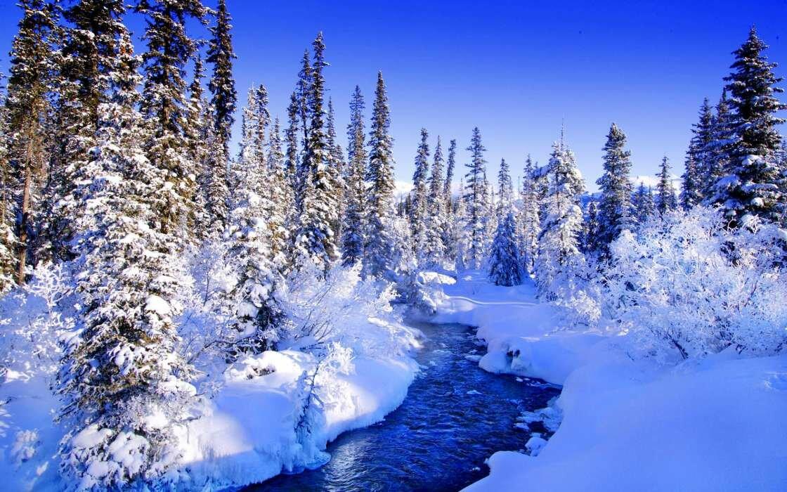 фото зимних пейзажей для рабочего стола аренде