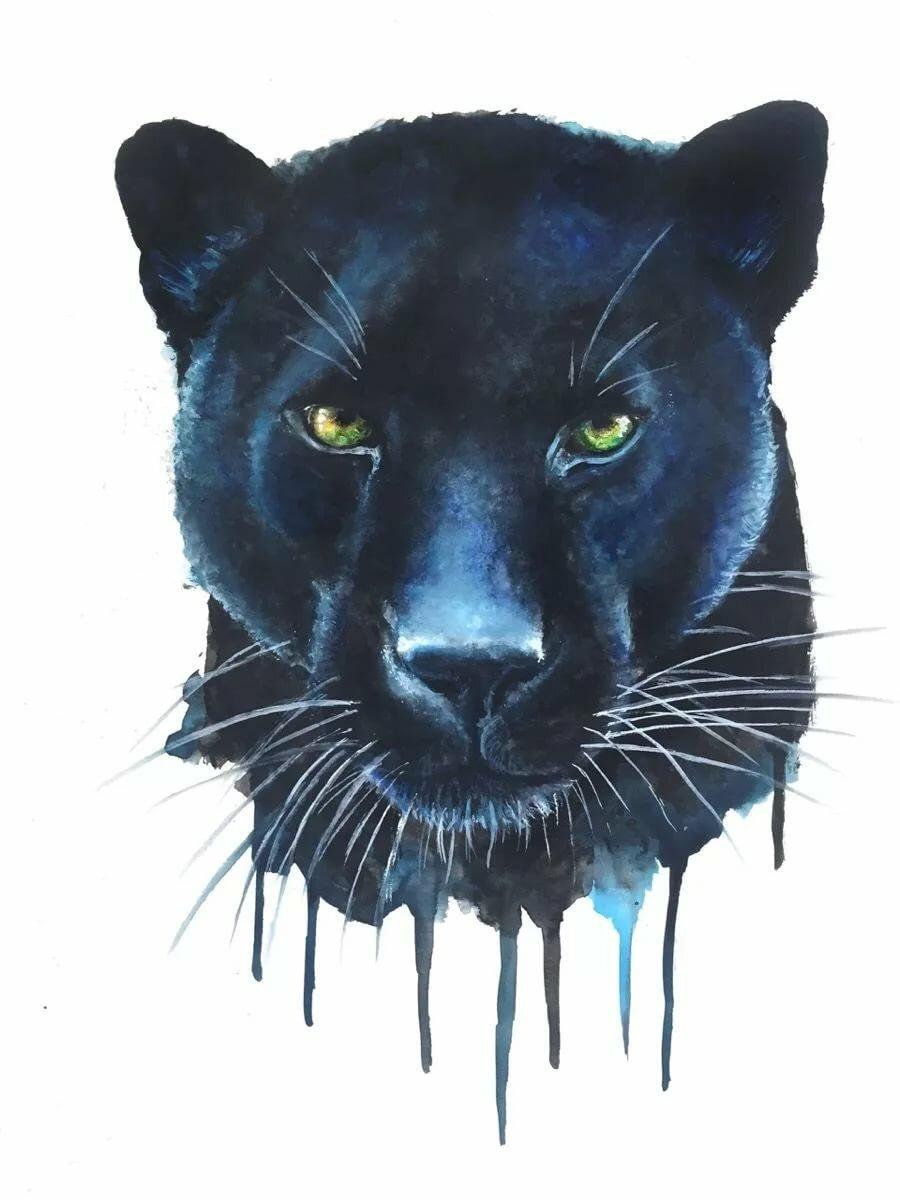Картинки пантер рисованных