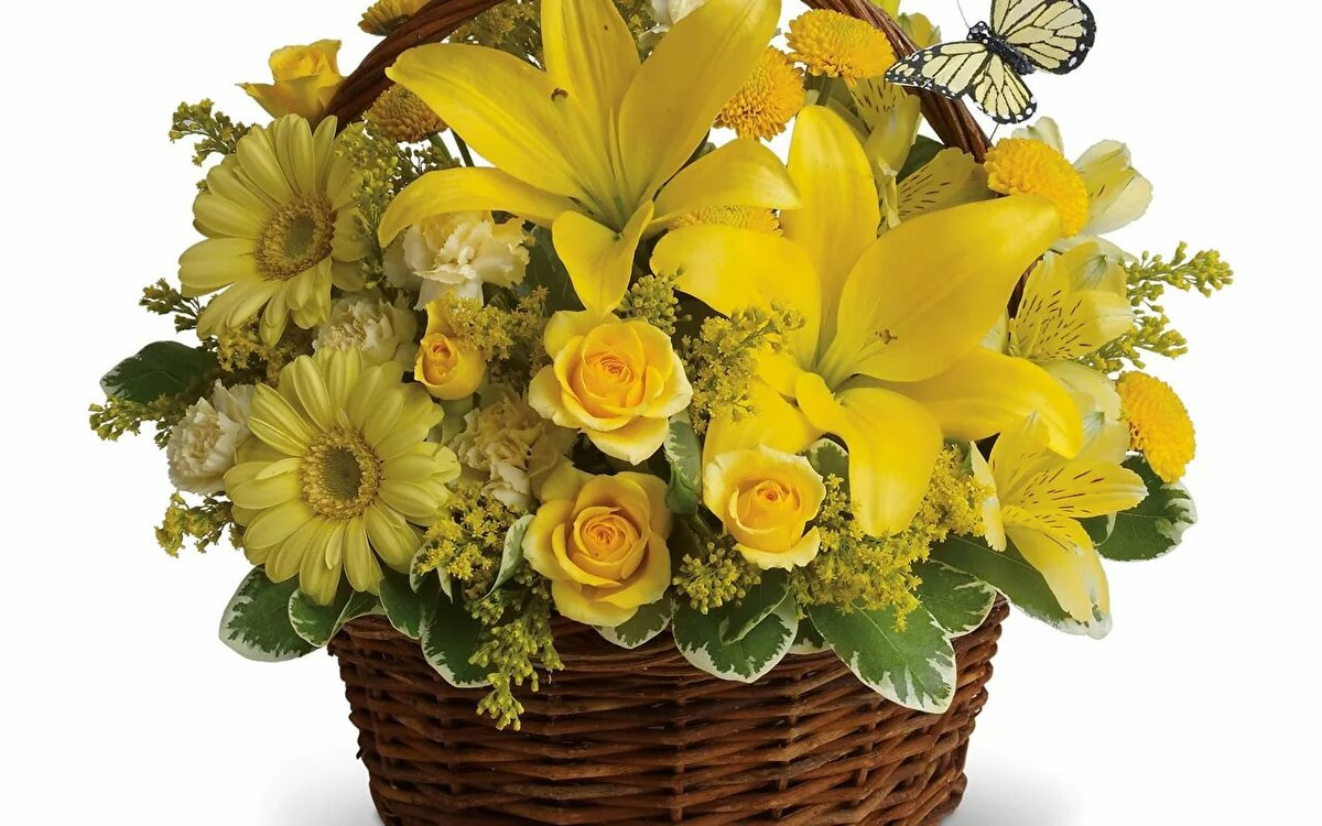 узкие желтый букет цветов открытки правильная германия покажет