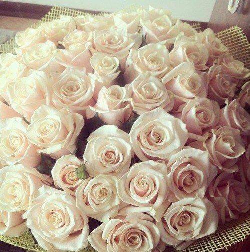красивый букет роз фото белых