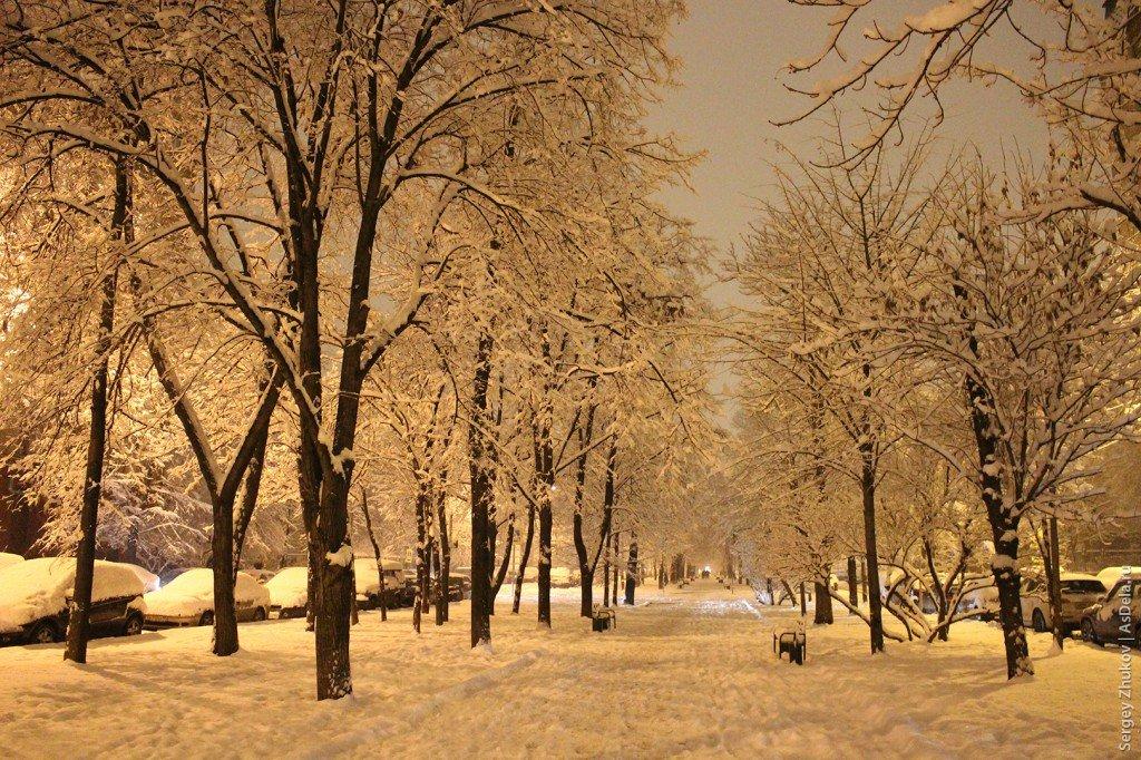 уже зима на бульварах москвы фото прошлом