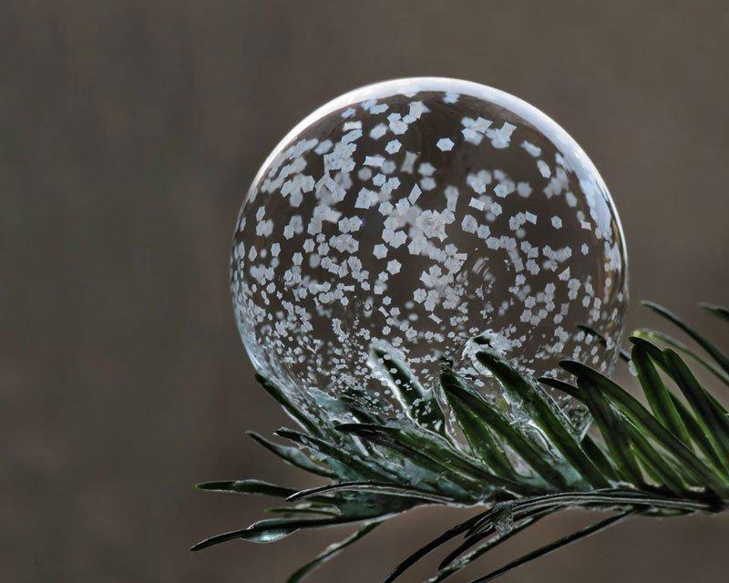 Что произойдёт, если надуть мыльные пузыри на морозе