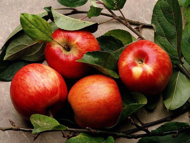 NewPix.ru - Красивые фотографии сочных ягод и фруктов